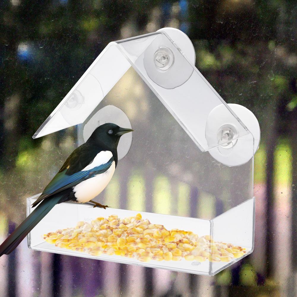 Acrílico transparente adsorción casa tipo forma pájaro innovadoras copa de succión alimentador