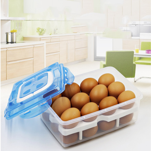 Clear Large Capacity Portable Home Picnic Plastic 2 Layer Egg Box
