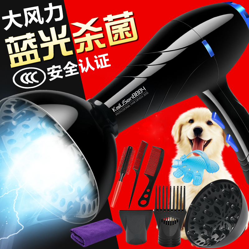 Portable Electric Pet Hair Dryer Water Machine High Power Mute Dogs HairDryer Golden Hair Teddy Cats Large Dogs Hair Blower free shipping new version bs 2400 2200w low noise per dryer pet blower with eu plug dog cat variable speed dryer pet grooming