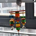 moveable Parrot bird toys swing wood chew rope toys fun with bells medium size