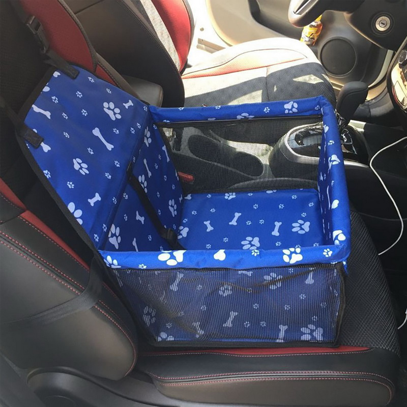 dog carrier in car