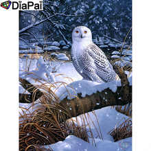 DIAPAI Diamond Painting 5D DIY 100% Full Square/Round Drill Animal owl snow Embroidery Cross Stitch 3D Decor A02566