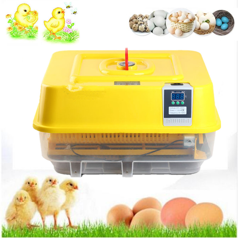 1 Piece home use small chicken egg incubator egg setter incubator hatcher automatic brooder for quail ducks goose все цены