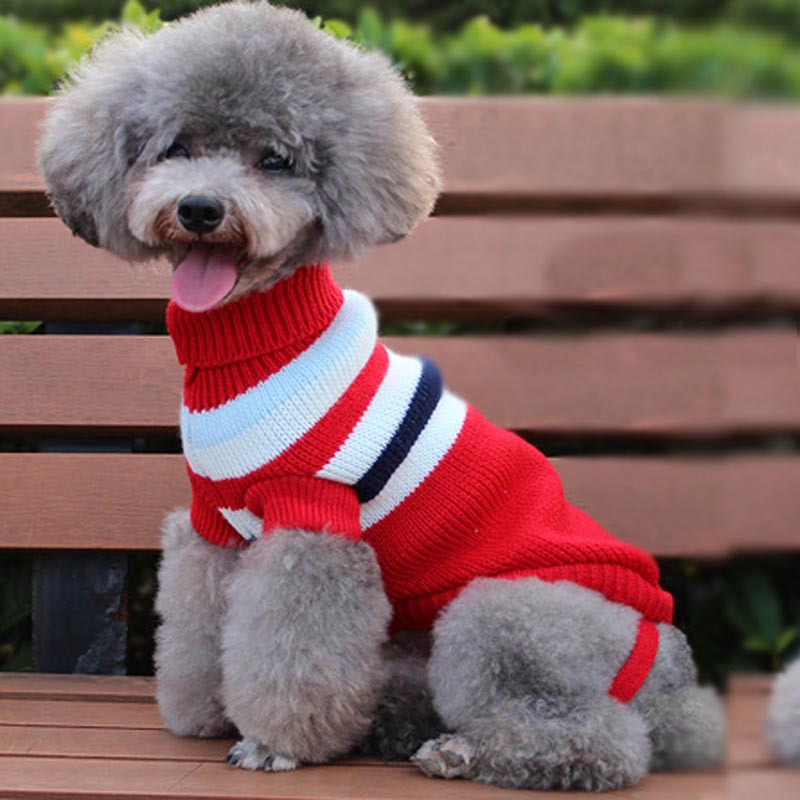 Fashion Style English Letter Fashion Cool Dog Hoodie Coat Clothes Autumn Winter Two Legs Puppy Dog Cat Hoodie Jackets For Small Chihuahuas 10e Pet Products