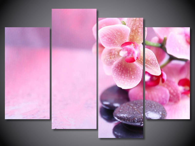 AtFipan Free cargo Orchid Stone Print Painting Canvas Unframed Wall ...