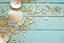 все цены на Laeacco Wooden Board Shell Starfish Baby Children Photographic Backgrounds Customized Photography Backdrops For Photo Studio онлайн