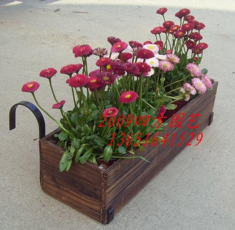Hanging Flower Box Pot Diaopen Pots Basket Gardening Supplies Wooden Scuppernong