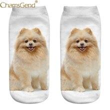 Chamsgend/Прямая поставка; повседневные милые хлопковые носки для женщин и девочек с 3D принтом шпиц; 80228