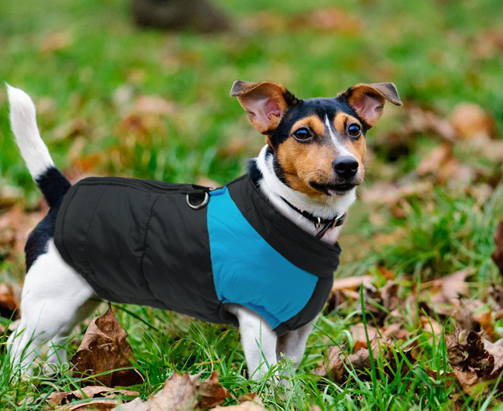 Waterproof Dog Jacket with Zipper for Large Dogs Made with Nylon Material 9