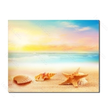 Laeacco Seaside Shell Starfish Posters and Prints Nordic Painting in Canvas Wall Artwork Living Room Bedroom Home Decor