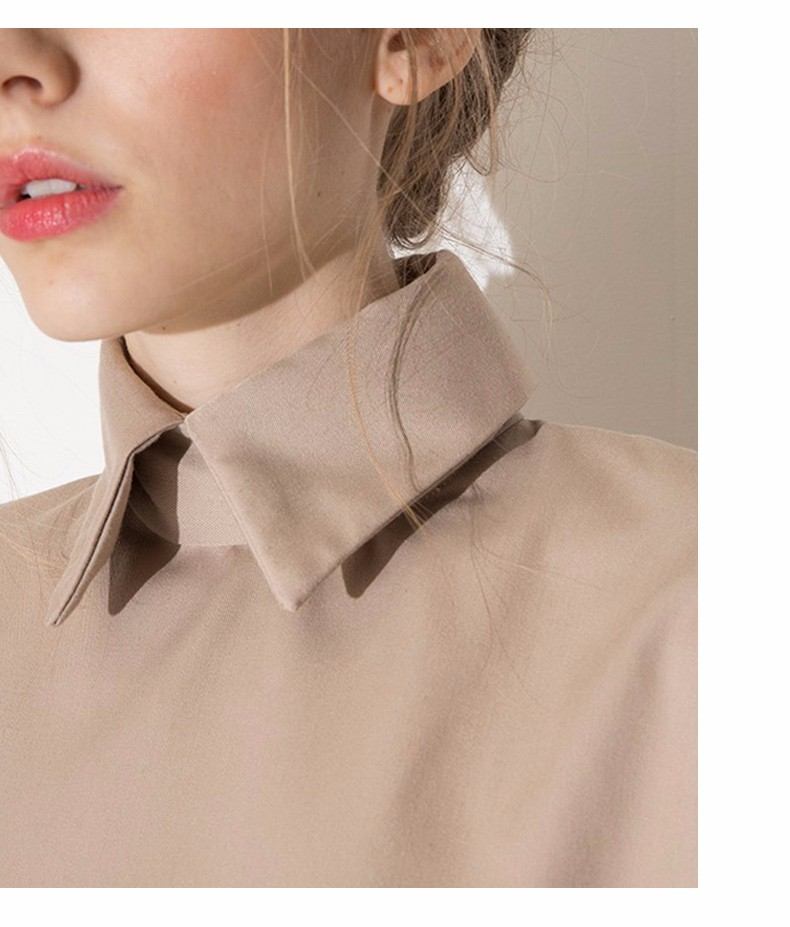 HTB197ptLpXXXXbKapXXq6xXFXXX0 - Style shirt fashion turn down collar blouse slim women shirt