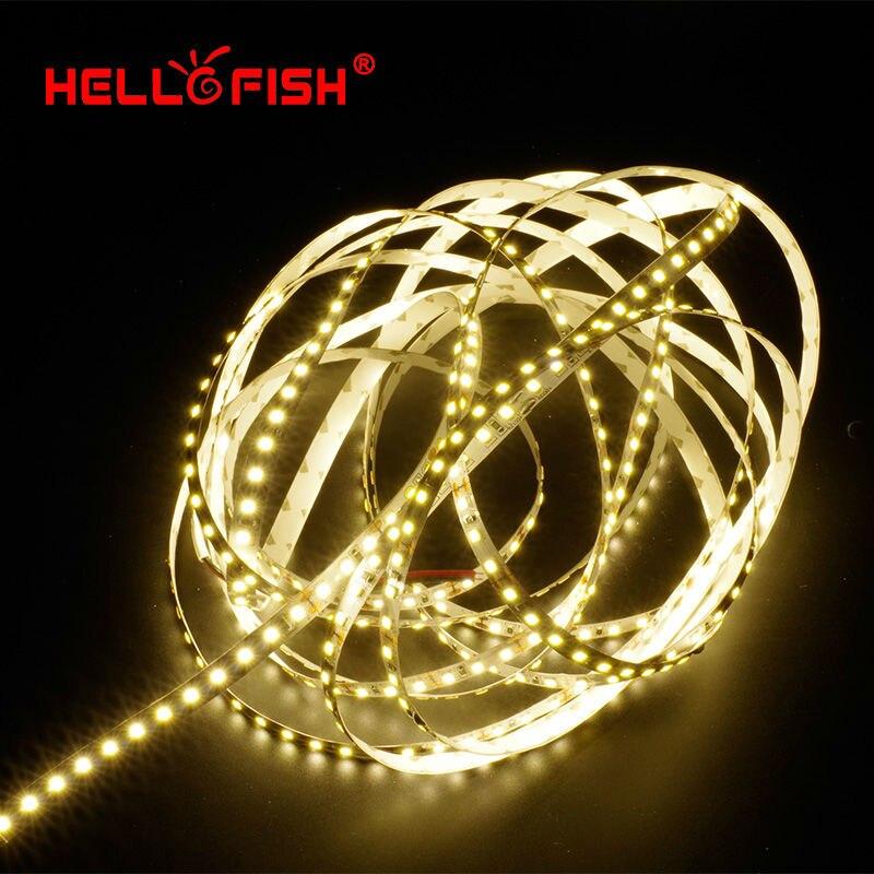 Hello Fish 5M 2835 600 SMD LED sloksne 12V elastīga120 LED gaismas - LED Apgaismojums - Foto 4