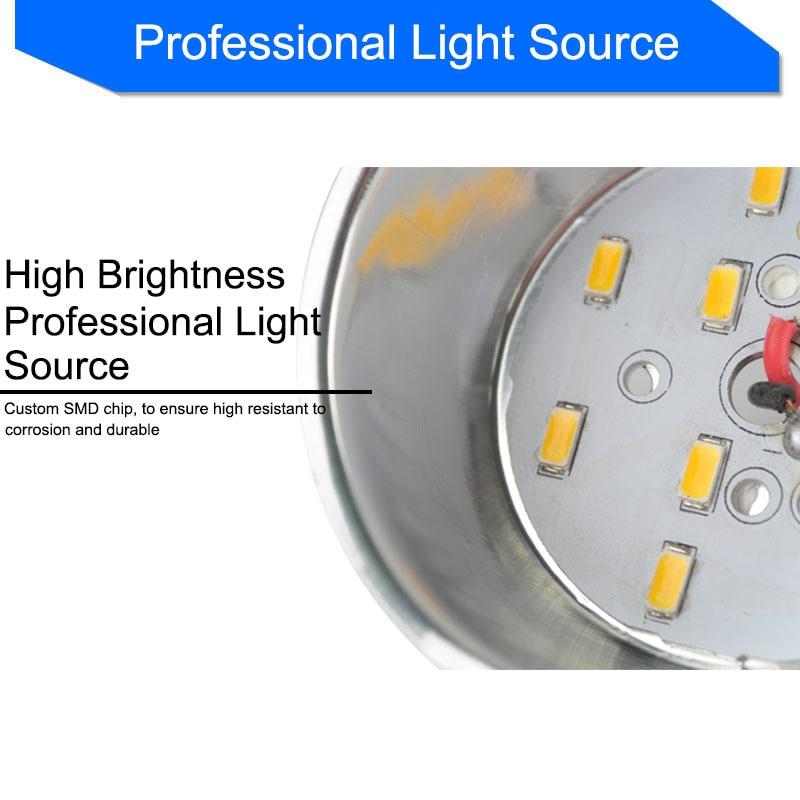 Արծաթագույն սպիտակ ցրտահարված - Ներքին լուսավորություն - Լուսանկար 4