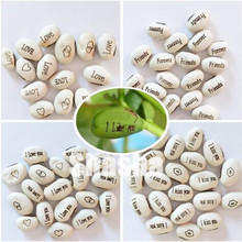 10 Pcs Magic Growing Message Beans Bonsais Magic Bean English Magic Bean Potted Green Office Home Decor for Flower Pot Planter