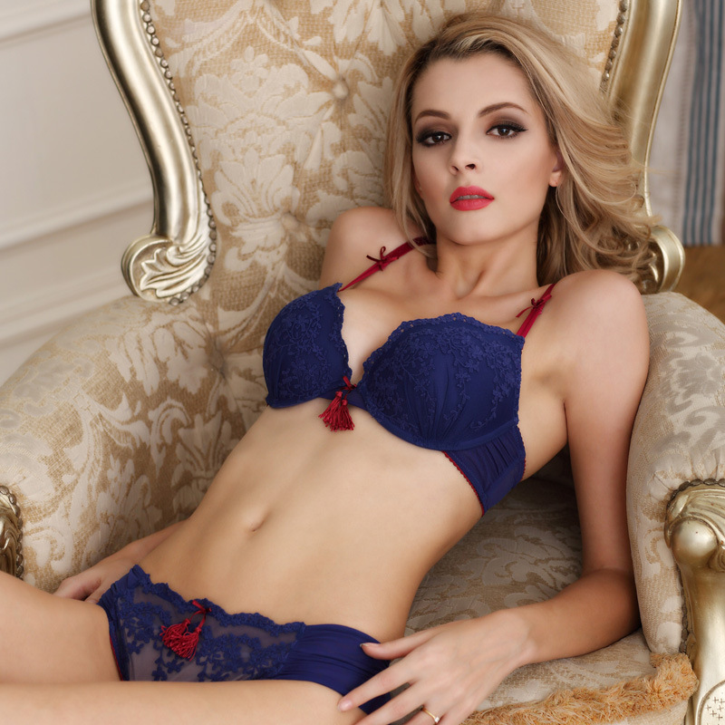 e24b76a09f524 Sexy Charming Underwear Women Bra Set Lingerie Set Luxury Vintage Lace  Embroidery Push Up Bra And Brief Set