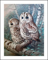 Owls On Tree Diamond Embroidery 5D Painting Cross Stitch Mosaic Pattern Square Rhinestone Needlework Gift Home