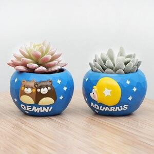 Image 2 - Roogo mini blue 12 horoscopes flowerpot landscape plant bonsai succulent pots desk garden yard decoration best gift items
