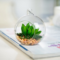 Free Shipping Small Packing Flat Bottom Glass Globe with one open Transparent Hanging Glass Terrarium Vase Wedding Decoration