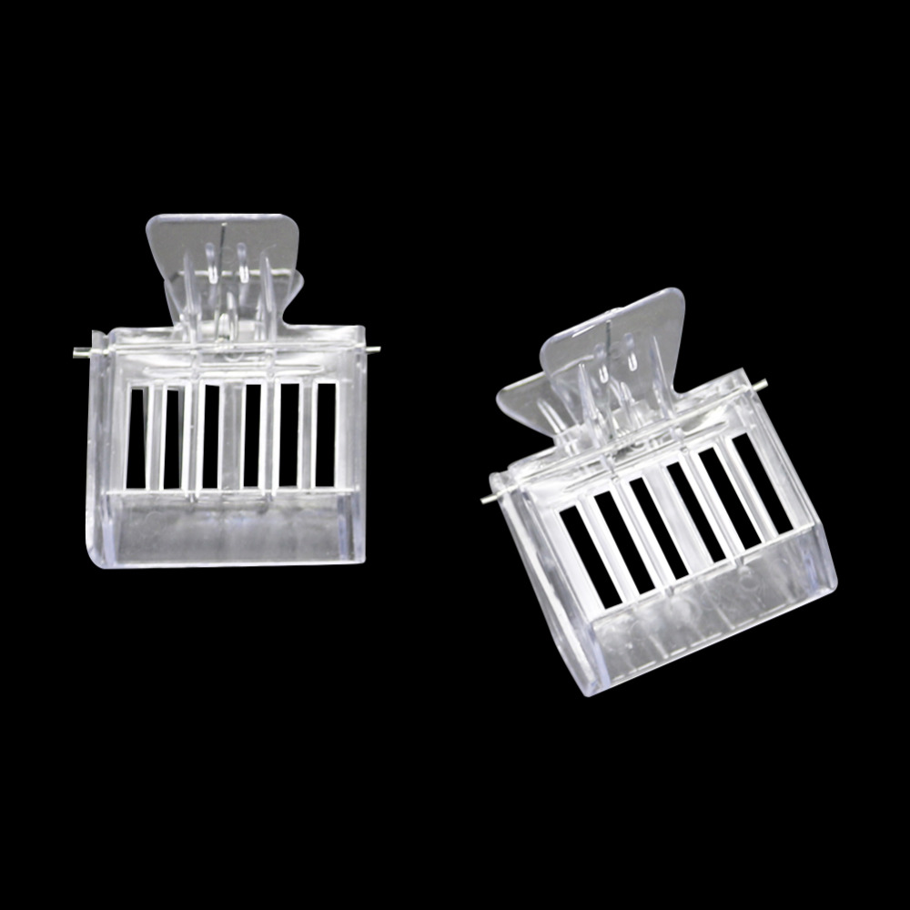 Transparent Plastic Clip Catcher Trap #62 Maitys 10 Pack Queen Bee Cage Catcher