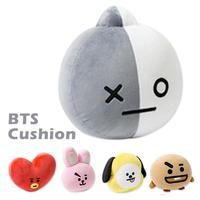Kpop Home Bangtan Boys BTS Rap Monster Vapp Bt21 Same Pillow Warm Bolster Q Back Cushion