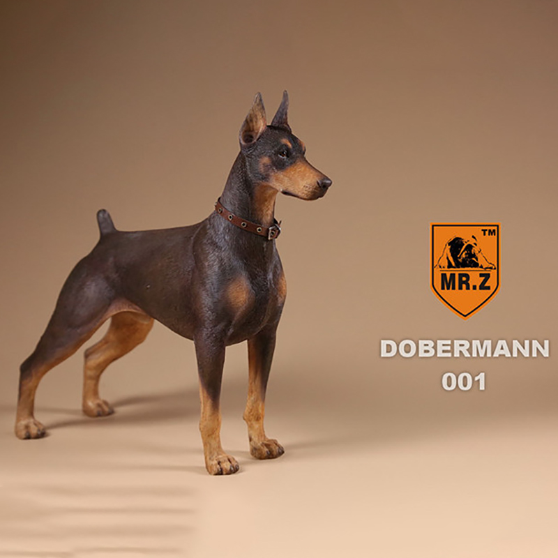 Mr.Z Real Animal 10th 1/6 scale dog about 15cm.Germany Doberman Statue Pinscher model DB001 for 12HOTTOYS HT collectible Figure военные игрушки для детей hot toys wt hottoys ht 1 6