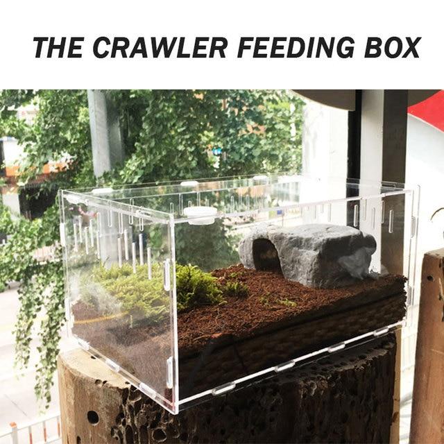 1 Pc Acrylic Transparent Terrarium Reptiles Living Box Reptile