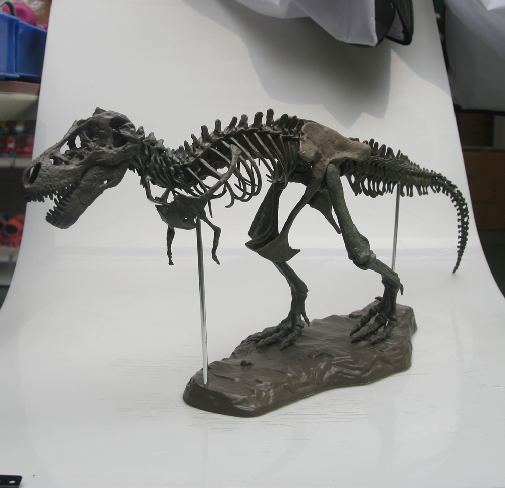 Tyrannosaurus Rex Skeleton Dinosaur PVC T Rex Animal Model Toys Collector Super