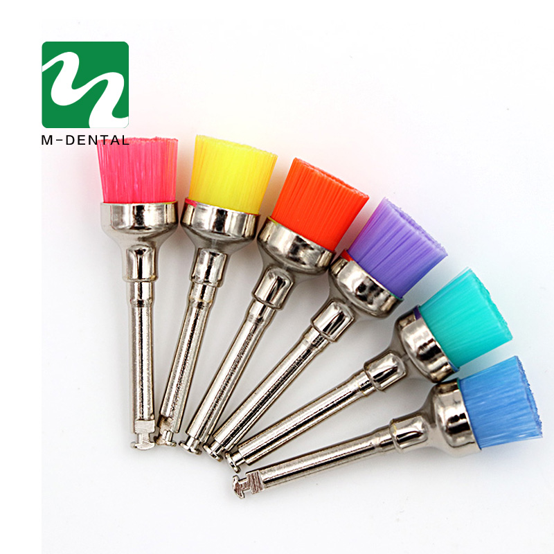 Colorful Nylon Latch Datar Polishing Polisher Prophy Piala Brushes Produk Dokter Gigi Dental Lab