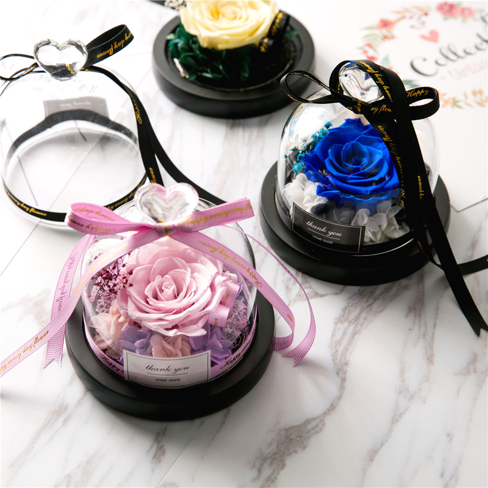 Exclusive-Rose Lights Glass-Dome Day-Gift Beauty-And-The-Beast Preserved-Valentines Eternal