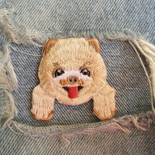 Compare Prices On Pomeranian Dog Clothes Online Shopping Buy Low