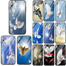 Tempered Glass Mobile Phone Accessories Cover for iPhone 5 5S SE 6 6s 7 8 Plus X XR XS Max Cases Sexy Peace White Pigeon(China)