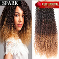 7A Malaysian Kinky Curly Hair Extension 1pc/Lot Malaysian Virgin Hair Bundles Unprocessed Human Hair Weaving Free Tangle LY93
