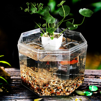 PETFORU Big Size 4 Room Aquarium Acrylic Four Splits Betta Fish Tank With Basket Plant 4 Bow Fighting Isolation hatch breed box