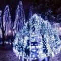 Cadena de Luz de Navidad/de La Boda/Decoración Del Partido Luces DC 110 V 220 V Impermeable al aire libre llevó la lámpara de 5 Colores SY3