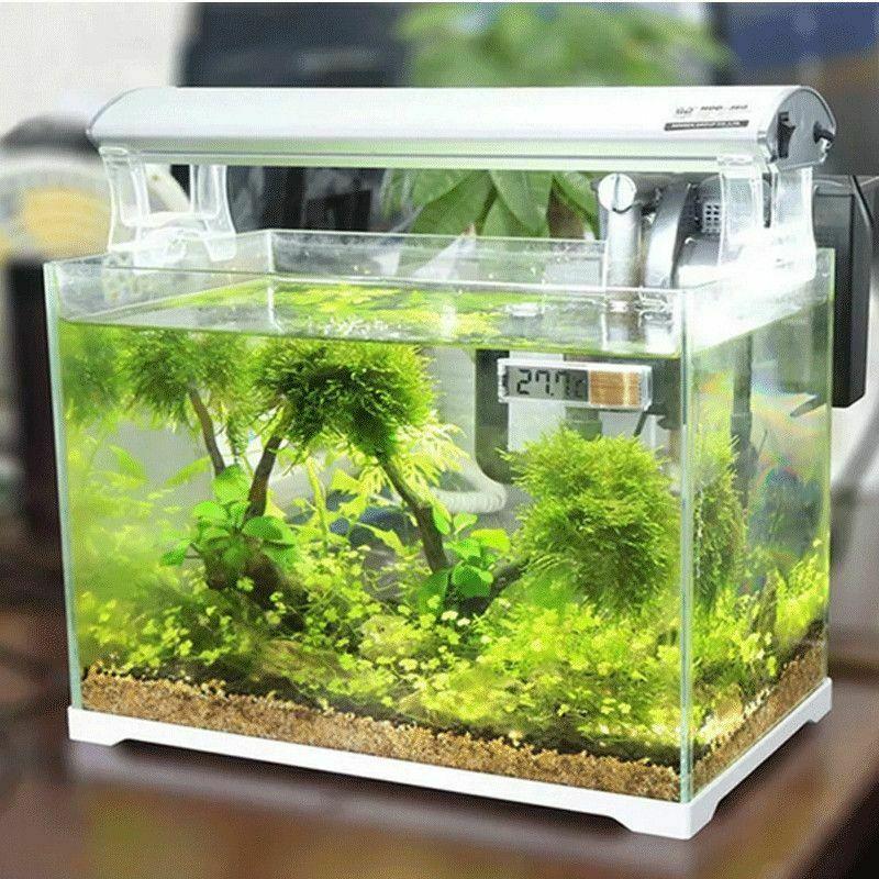 New Arrival Plastic Metal 3D Digital Electronic Aquarium Thermometer Fish Tank Temp Meter Gold Silver