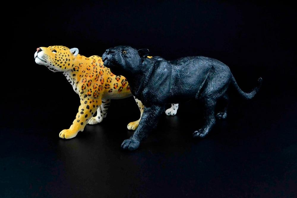 830 Koleksi Gambar Hewan Black Panther Gratis Terbaik