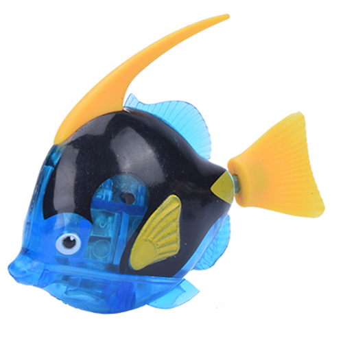 Angelfish Dark Blue