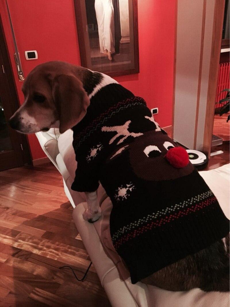 Xmas Reindeer haustier hund pullover für herbst winter warme ...