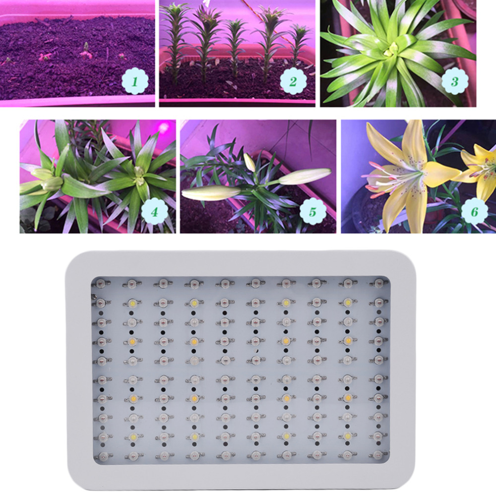 led grow light glasses tent hydroponics plant growing indoor plants lamps greenhouse 1000W Full Spectrum for Medical Veg Bloom купить
