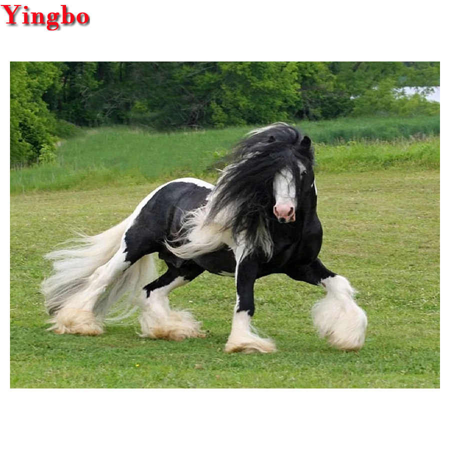 5D Tự Làm Tranh Gắn Đá Clydesdale Dự Thảo Ngựa Full Vuông Hình Tròn Thêu Chéo Nữ Thời Trang Đá Khảm Trang Trí