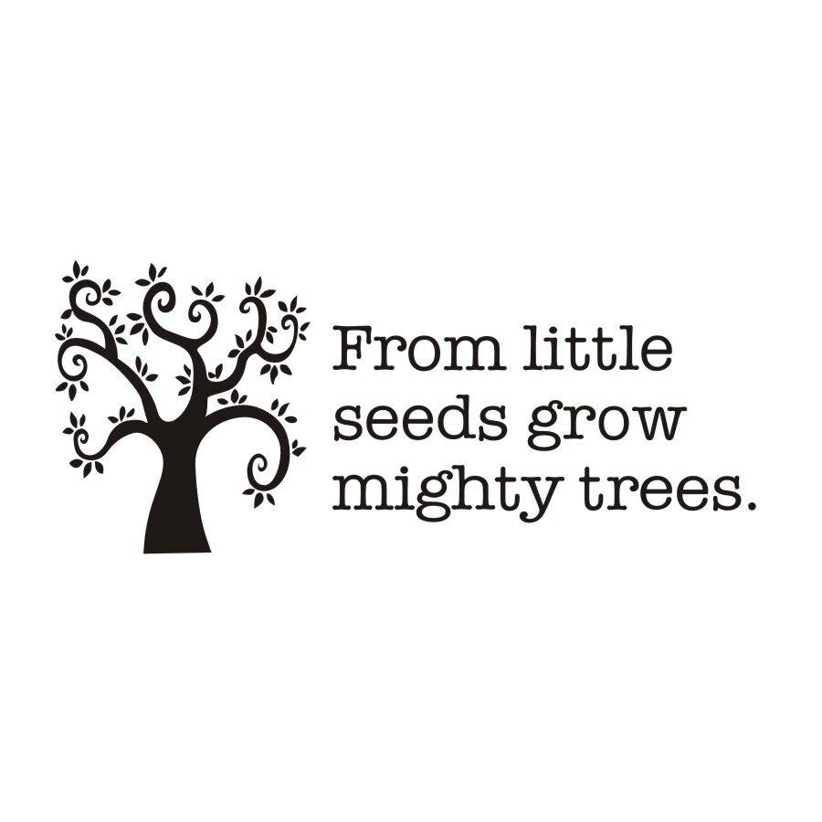 Van Weinig Zaden Groeien Mighty Bomen Inspirational Citaat