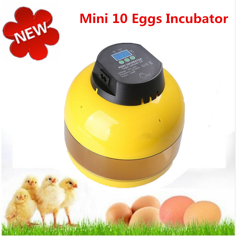 Capacity 10 eggs Mini Incubator  for home use chicken goose quail hatching machine with digital temperature control