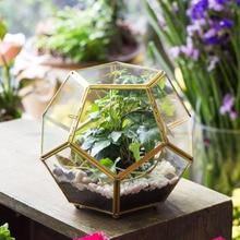 Koule zlato měď mosaz sklo geometrický terárium pentagon kuličkový tvar Otevřený Fern Moss sukulentní ovzduší Decor skleník 6.89