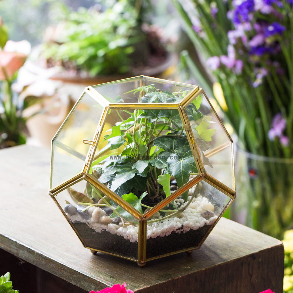 Copper Brass Sphere Glass Geometric Terrarium Pentagon Ball Shape Open Fern Moss Succulent Air <font><b>Plant</b></font> Decor Greenhouse 6.89inches