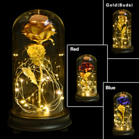 WR Romantic Gold Plated Rose Everlasting Flower With LED Light in Glass Artificial Flowers Wedding Decoration Valentine's gift