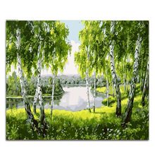 Coloring by numbers White Birch at the creek scenery pictures paintings   artwork canvas paint with kits for hoom decor the hanging at stinking creek