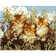 Three Cats in Grass.40x50cm,Painting By Numbers,DIY,wall Art,Living Room Decoration,Scenery,Figure,Animal,Flower,Cartoon(China)