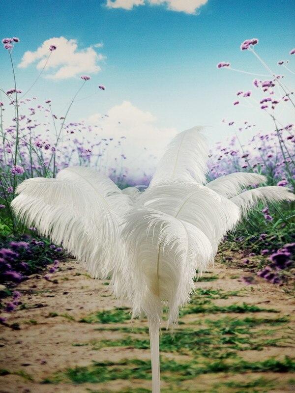 도매 완벽한 100 pcs 고품질 천연 흰색 타조 깃털 18 20 inch/45 50 cm 장식 diy-에서깃털부터 홈 & 가든 의  그룹 1