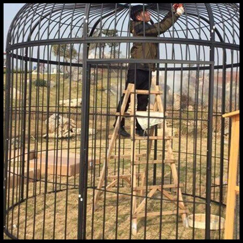 Super grande cage à oiseaux en fer forgé paon décoration de mariage personnalisée accessoires cage à oiseaux affichage extérieur grande cage - 5