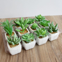 Artificial Potted Succulent Small Plants